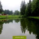 Angelteich, Angelpark in der Nähe von Köln. Angeln und Entspannen in der Natur..